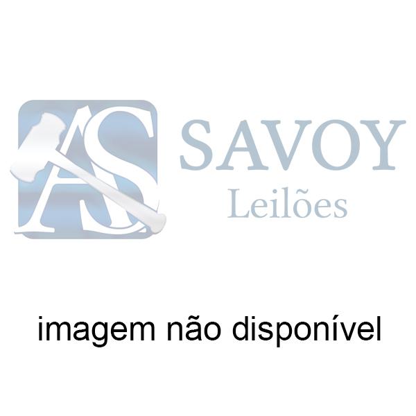 CARCAÇA DEL REY